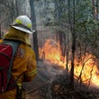 Winmalee Fires - NSW Crews - Day two of the Blue Mountains Fires, saw fire crews conduct back burning operations in some areas, while active firefighting...