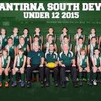 WSJFC 2015 - Wantirna South Junior Football Cub Team Photos