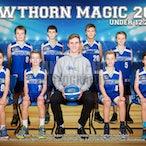 Hawthorn Magic Juniors 2016
