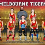 Melbourne Tigers 2016