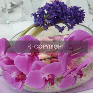 Barnaart Wedding