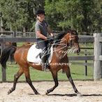 Equine Junior Riders