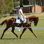 Watagan Equestrian Club 23.9.2012 3 of 3 Dressage folders - 3rd of the 3 DRESSAGE folders