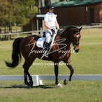 Watagan Equestrain Club 23.9.2012 2 of 3 Dressage folders - 2nd of the 3 Dressage folders