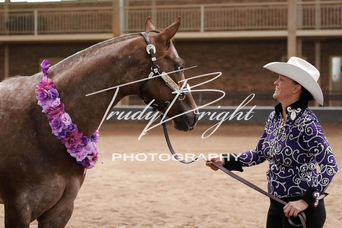 C C Regional Appaloosa Club Oct 2013   Trudy Bright Photography