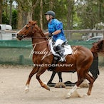Central Coast Working Equitation 15.12.2013