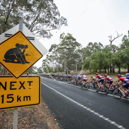 2015 Herald Sun Tour, Stage3