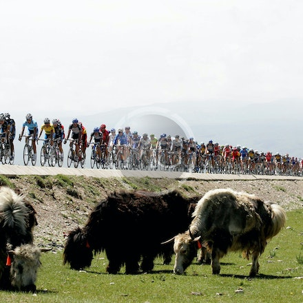 Tour of Qinghai Lake (2006-2010)