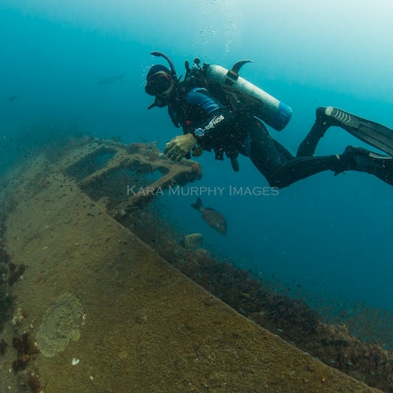 Diver, Yongala - A scuba diver explores the Yongala wreck, Great Barrier Reef Marine Park, Queensland, Australia.