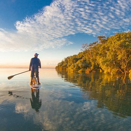 Mangrove reflections