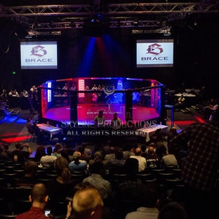Brace MMA - These are all photo Brace related from 20th September 2013 - Present
