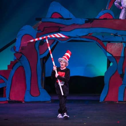 Luminary Seussical Jr