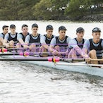 BGS Action 2014