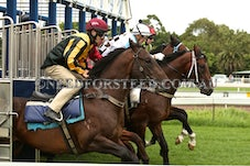 3 JANUARY 14 RANDWICK BARRIER TRIALS