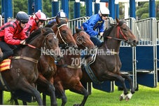 4 APRIL 14 RANDWICK BARRIER TRIALS