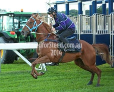 11 APRIL RANDWICK JUMPOUTS AND TRACK