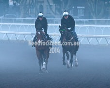 22/23/24 JULY RANDWICK TRACK WORK