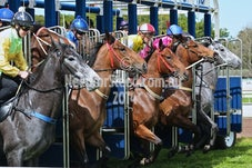 19 SEPTEMBER RANDWICK BARRIER TRIALS