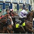 BROWDEN RACE 5 4x6 IMG_6560 2014-10-03