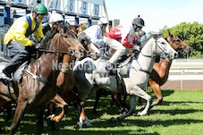17 NOV RANDWICK BARRIER TRIALS