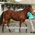 EXCEED AND EXCEL X RED RIVER IMG_9682 2015-08-02