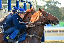 29 APRIL 16  JUMP OUTS AND TRACK WORK