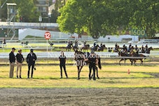 8 NOV RANDWICK TRACKWORK