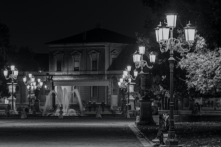 088 Padua 061115-3330-Edit - Padua is a lovely Italian city this was taken in a park I love trying to capture street lights