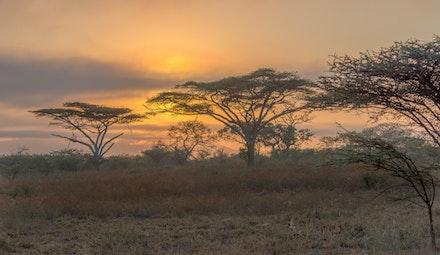 021 Thanda Safari Lodge 030515-8466-Edit