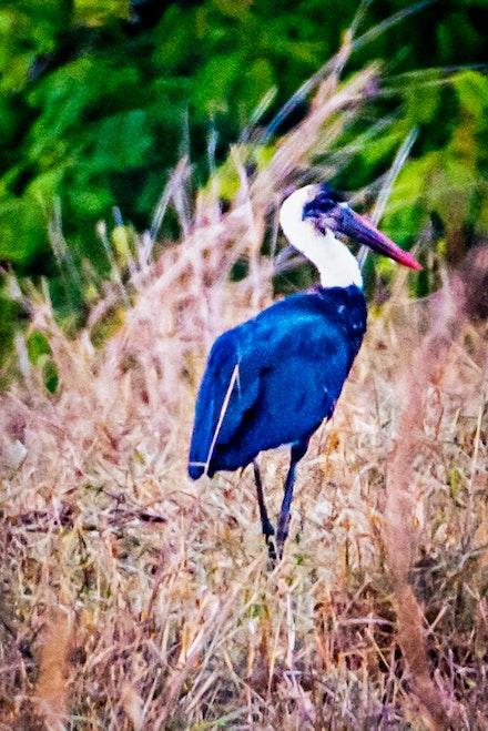 021 Thanda Safari Lodge 030515-8471-Edit