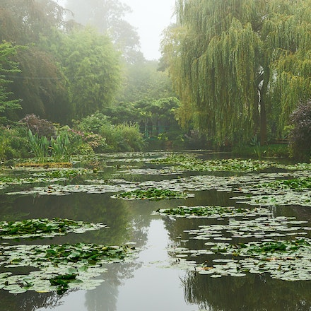 126 - Giverny - 21-09-16-0585-Edit - Lily pond
