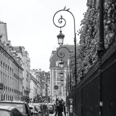 144 - Paris - 4th- 030517-4171