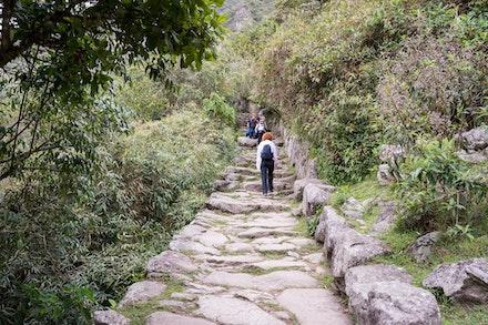 252 - Machu Picchu - 251017-8673