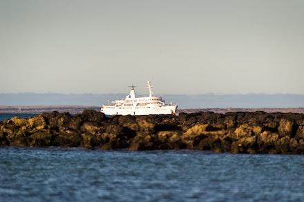 256 - Galápagos - 301017-9329