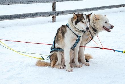 093 Longyearbyen - 250317-2883-Edit
