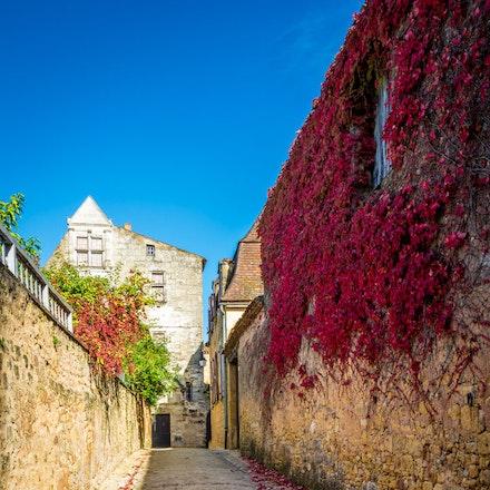 France 2013 Dordogne 042