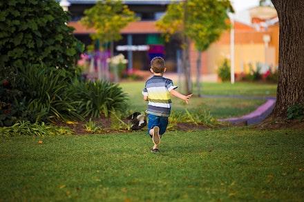 Whelan - Runaway Boy