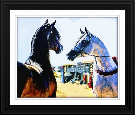 The Challenge Framed - Art for your sake, to lift the spirits, ingnite the passion.