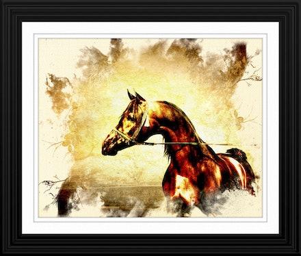 The Bay Stallion Framed - Art for your sake, to inspire,to motivate.