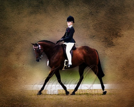 Changed background for an artistic effect. - Changed out background to create a work of art for your walls. The horse and rider are now the centre of attention....