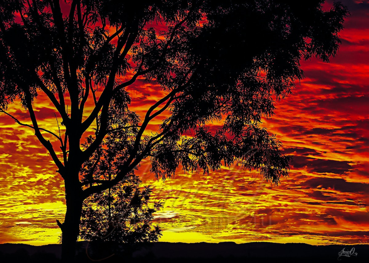 Red Sky - Shot from the backyard in Kentville, southeast Queensland, looking west as the sun sets. One thing about living in a rural community, the sky...