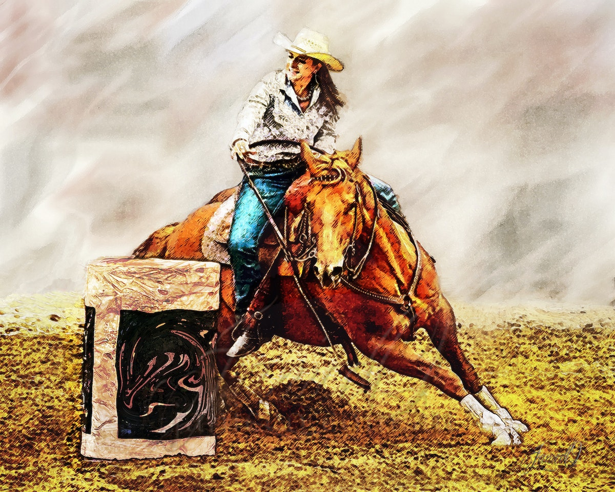 Barrel Racer - A fast paced rodeo event, combing the horse's athletic ability and the horsemanship skills of the rider to safely and successfully race...