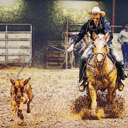 Roping Horse - The two most important qualities a rope horse needs are good conformation and good basics.