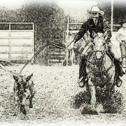 Roping Horse Sketch - The two most important qualities a rope horse needs are good conformation and good basics.
