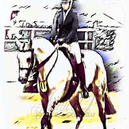 In the Saddle - An Arabian Derivative saddle horse competing in a hack class. Pencil and ink digital sketch.