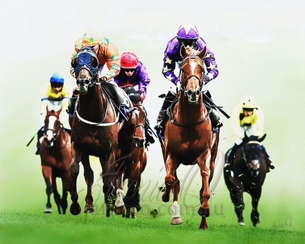 Turf Kings - Thoroughbred racehorse are the kings of the race track.