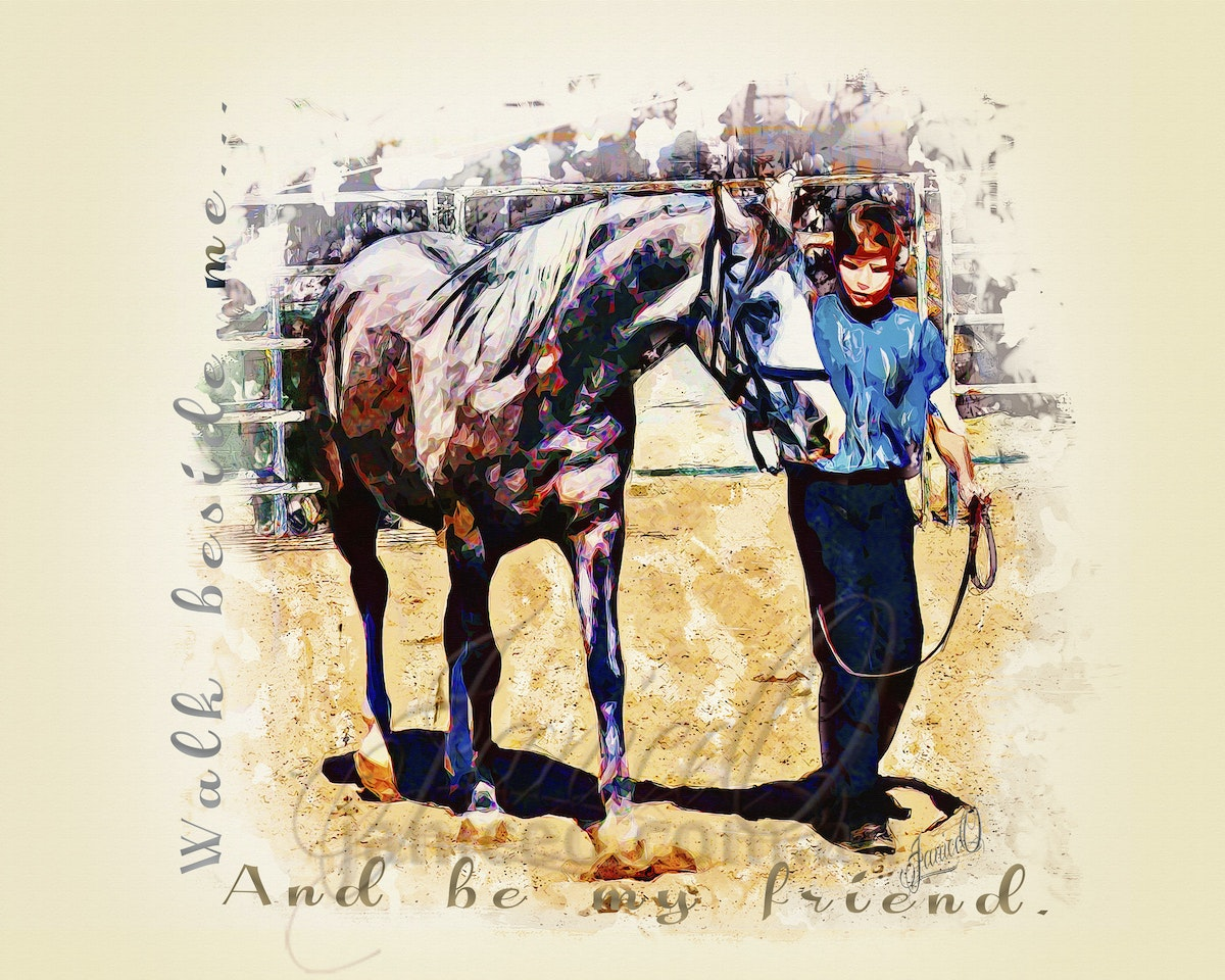 Be My Friend - An Arabian gelding and his friend, learning together.