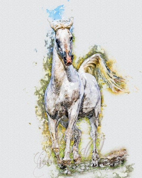 The Silver Stallion - The hero is always mounted on a white stallion and horse and rider generally save the day. A pen and watercolor piece on water colour...