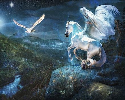 Flights of Fancy - Taking flight on the wings of fantasy...