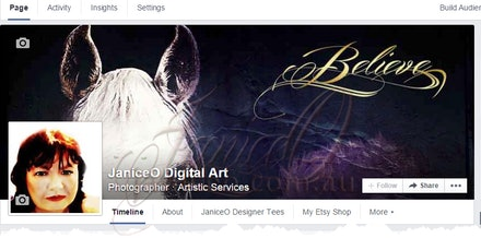 JaniceO Digital Art Facebook Cover Image - A cover image should represent the main purpose of the business, group, hobby or individual.